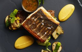 Grilled Fillet of Sea Bass